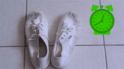 cleaning canvas shoes in washing machine style guru