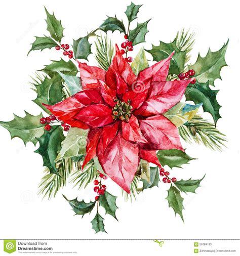 fiore natale fiori di natale dell acquerello illustrazione vettoriale