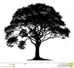Best White Tree - best hd white oak tree silhouette clip images