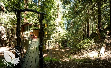 santa cruz tree house gling near santa cruz corralitos ca gling monterey bay