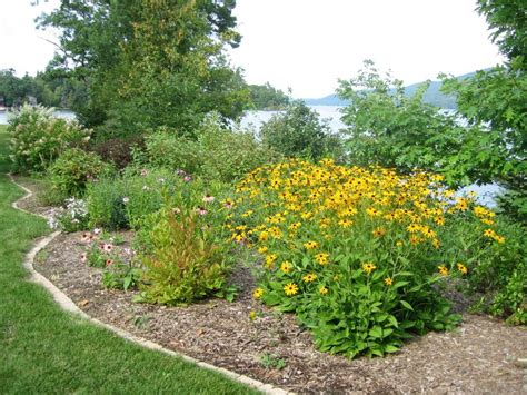 17 best images about septic mound landscaping ideas on