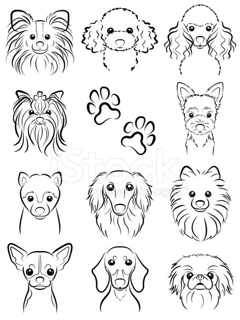 doodle line drawings line drawing stock vector freeimages