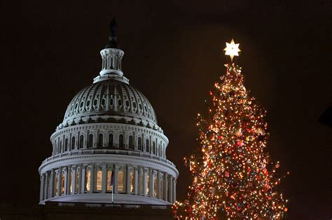 capitol christmas tree will make a stop in grand junction