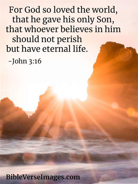 bible verse  life john  bible verse images