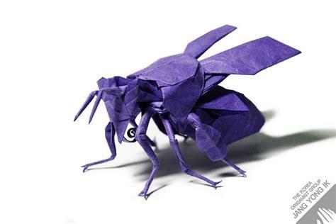 Origami Bee - origami honey bee 2 2 jang yong ik westons likes
