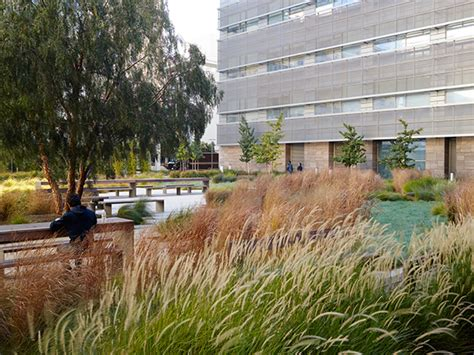Landscape Architecture Research Smith Cardiovascular Research Building On The National