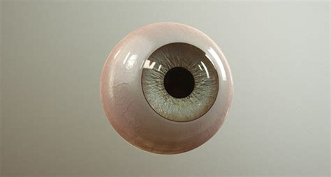 zbrush eyeball tutorial download pablander s free multi eye ztool cg channel