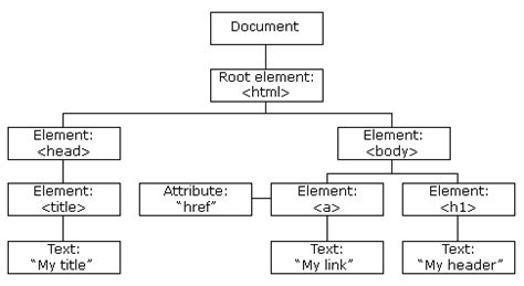 javascript tutorial w3schools exles javascript tutorial learn the basics