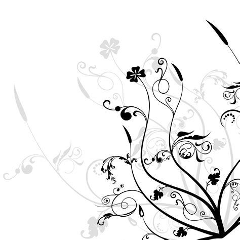 Black And White Flowers Wallpapers Hd Pixelstalk Net Black And White Designs