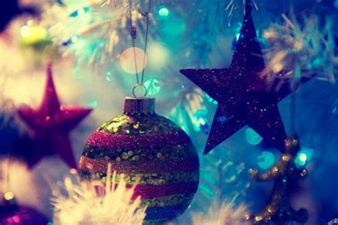 christmas photography fan photo 17676040 fanpop