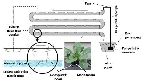 cara membuat media hidroponik dari pipa panduan praktis cara menanam tanaman hidroponik just my