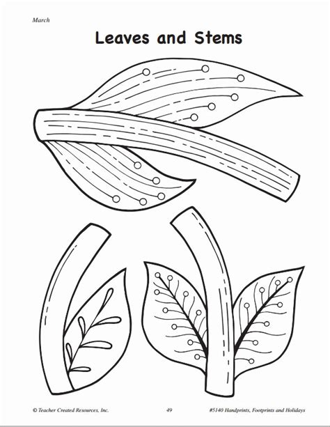Simple Leaf Template by Simple Leaf Template Coloring Home