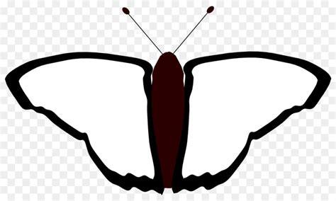 gambar kupu kupu hitam putih  diwarnai nurhayana