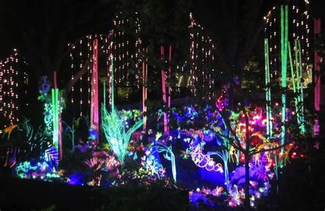 holiday light tours phoenix 5 places in the west to visit during the holidays detours
