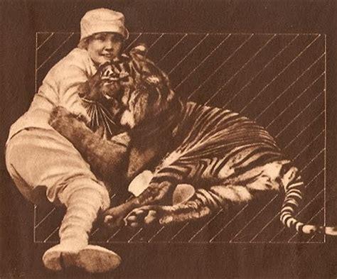 möbel starke chronicles of a twisted sistah knitta 9 feline fatale