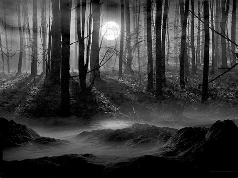 scenery wallpaper black and white black and white pictures anime forest 14 background