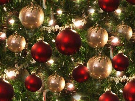 lights belrose background tree seamless belrose