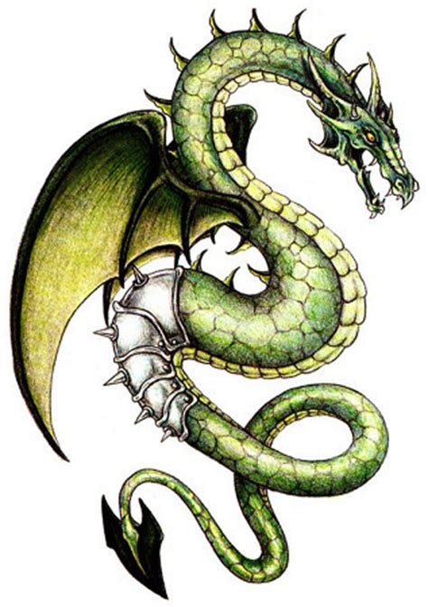 green dragon tattoo www pixshark images
