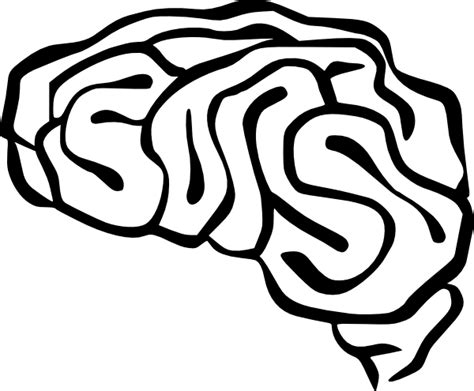 brain clipart brain clip at clker vector clip