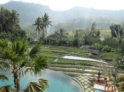 lihat photo lihat sawah guest house sidemen indonesia review