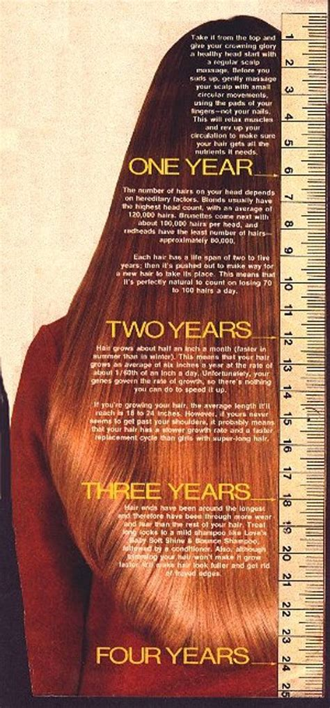 hair length chart my new project achieving healthy waist length hair by