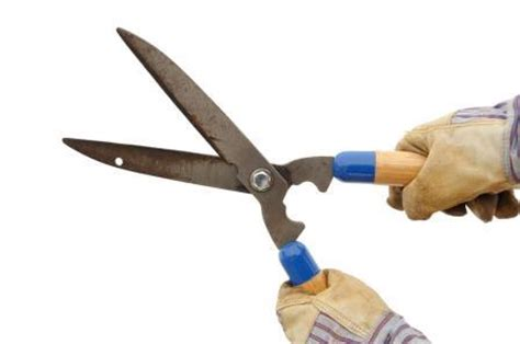 How To Sharpen Garden Shears by How To Sharpen And Clean Garden Tools Gardening Home