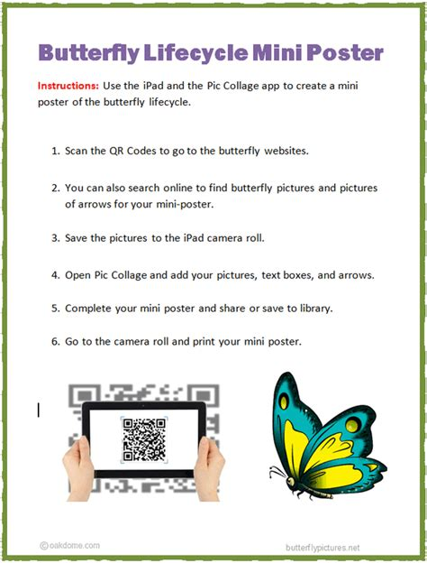 ipad butterfly lifecycle mini poster k 5 computer lab