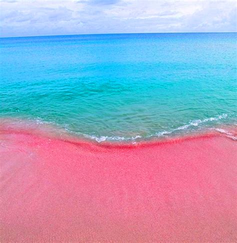 pink sand beach the caribbean s most colourful beaches beachbox