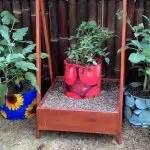 Harga Planter Bag 150 Liter planter bag tomato print 15 liter bibitbunga