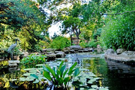 Zilker Park Botanical Gardens Brilliant Zilker Park Botanical Garden Botanical Gardens Alices Garden Gardensdecor