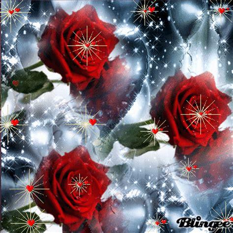 imagenes de flores brillantes rosas rojas picture 127655043 blingee com