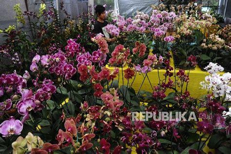 Khazanah Flora Dan Fauna Nusantara mufidah ingin bunga nusantara bersaing secara