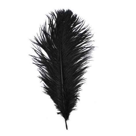 Black Feather black ostrich feather 30cm hobbycraft