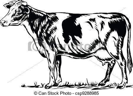 imagenes de vacas a blanco y negro illustrations de vache les noir silhouette de a