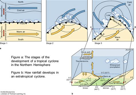 diagram of a cyclone extratropical cyclone diagram www pixshark images