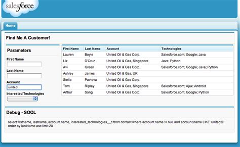 Can You Search For On Salesforce Building A Dynamic Search Page In Visualforce