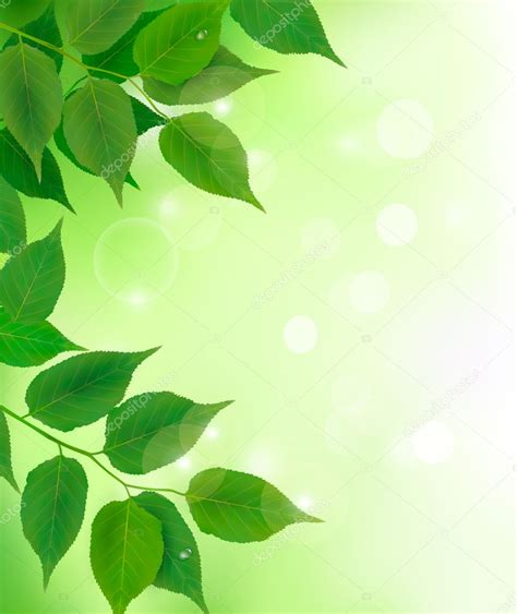 imagenes html width fondo de naturaleza con hojas verdes frescas vector