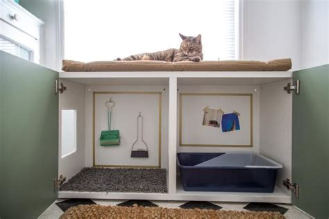 litter box in bedroom how to conceal a kitty litter box inside a cabinet how