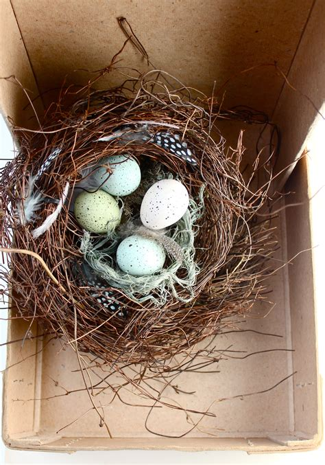 the birdmaker s nest where your treasure will be found safe and sound books nesting