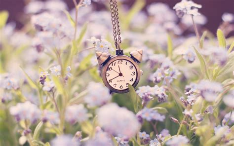 Jam Alarm Owl clock alarm chain flowers nature 6934862