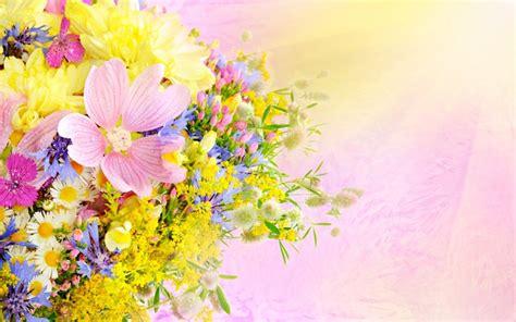 rose themes for windows 8 1 flowers windows 10 theme themepack me