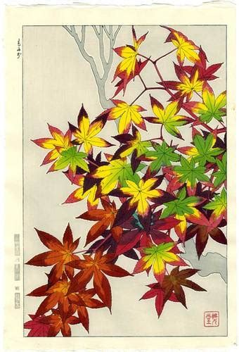 nagara pattern japanese 1000 ideas about maple leaves on pinterest canada