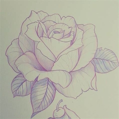 drawing pattern of rose pin by ml tanner on sketches pinterest tattoo