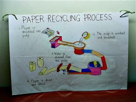 How To Make Recycle Paper At Home - ecology for and environmental science activities