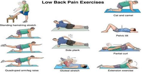 spine solutions india by dr sudeep jain exercise to strengthen your back muscles and to