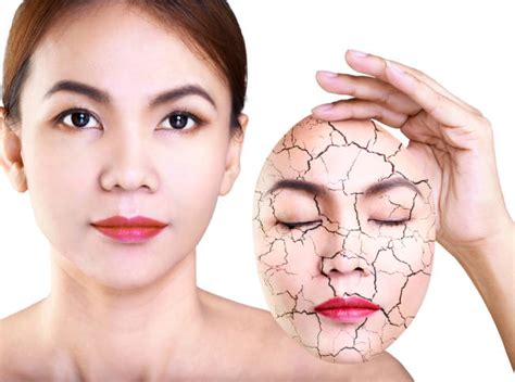 Pelembab Wajah Alami pelembab wajah alami untuk kulit kering ada di sini