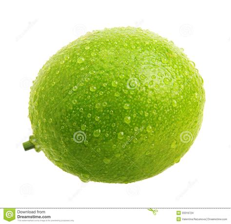 lime green water green lime with water drops stock images image 33316724
