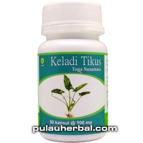Obat Herbal Zedo Plus keladi tikus toga nusantara zedo plus jual beli obat herbal