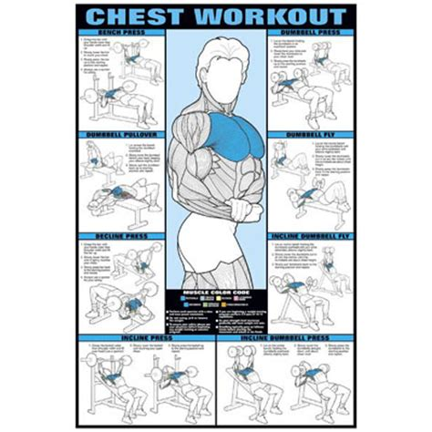 chest exercise at home search results calendar 2015