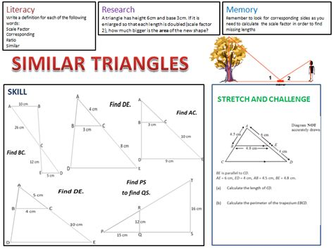 Similar Triangles Worksheet Answers by 28 Similar Triangles Worksheet Answers Right